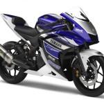 Nova Yamaha R25 de 250cc 2014 01