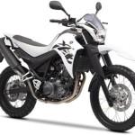 Yamaha XT 660R 2014 Europa