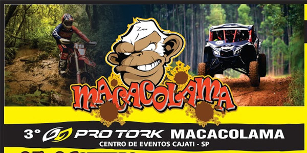 Pro-Tork-Macacolama-2019-00
